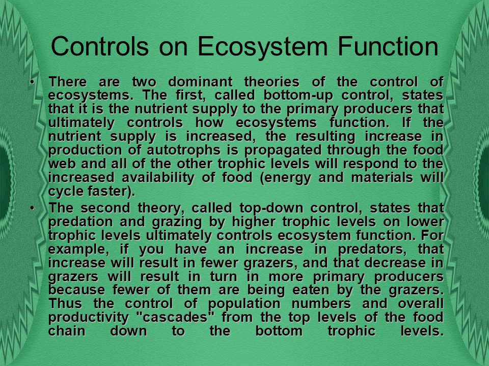 Controls on Ecosystem Function