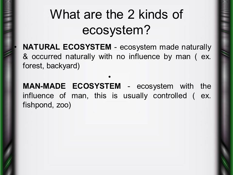 What are the 2 kinds of ecosystem