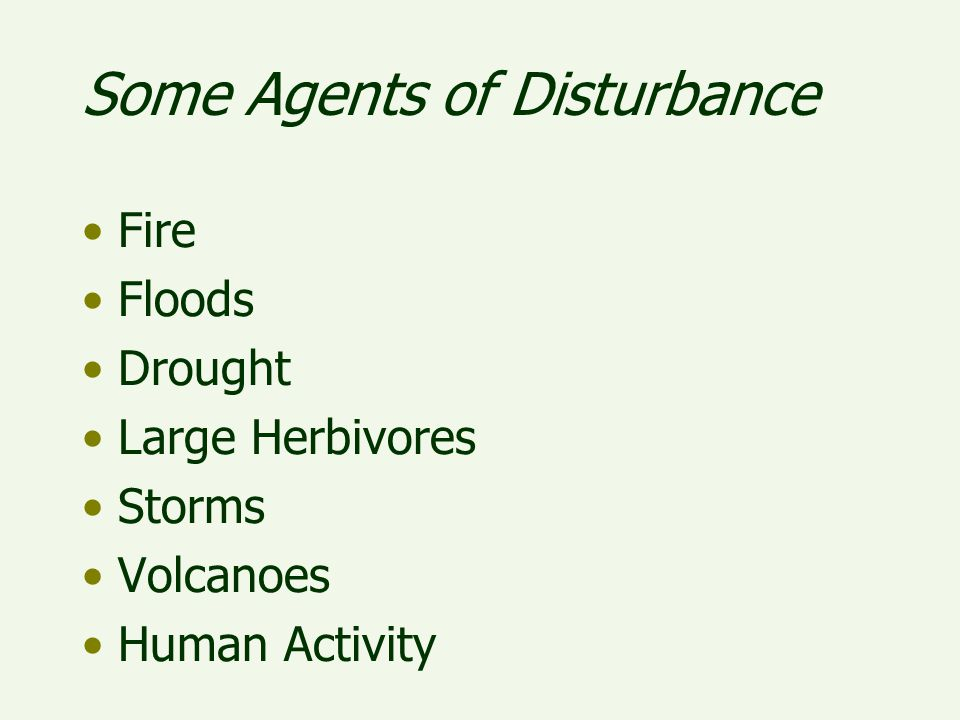 Some Agents of Disturbance