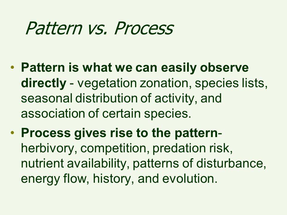 Pattern vs. Process