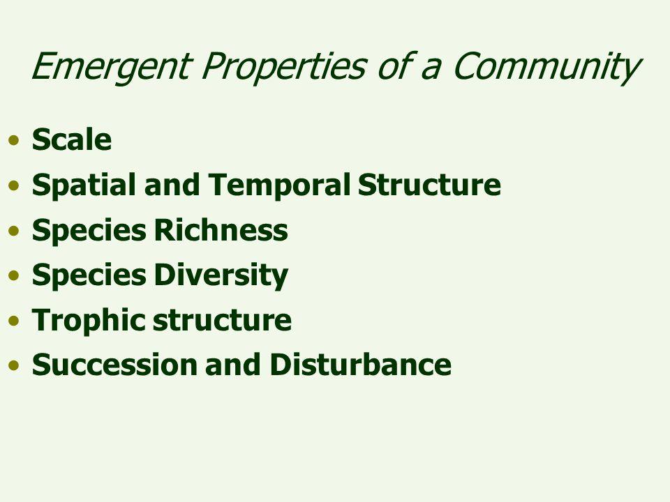 Emergent Properties of a Community