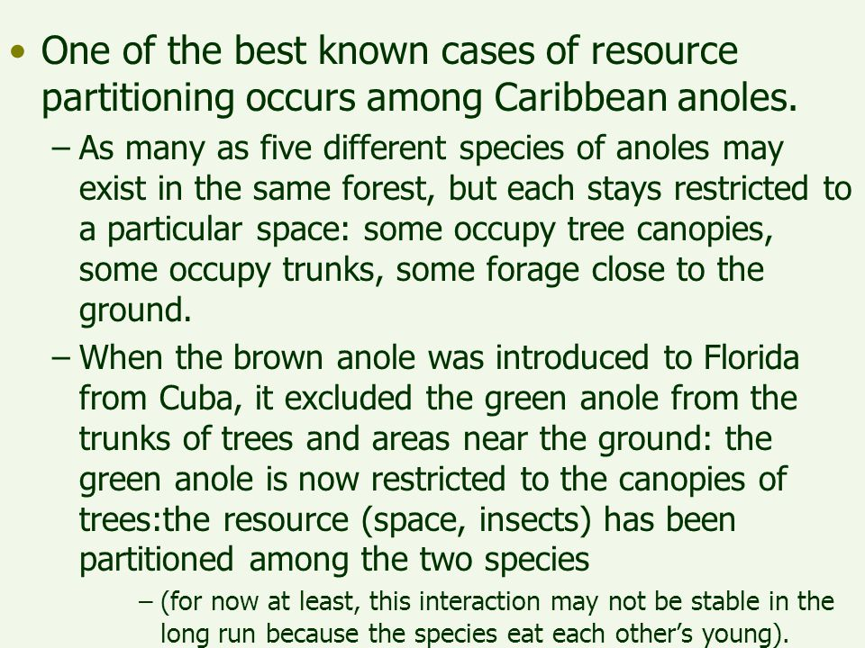One of the best known cases of resource partitioning occurs among Caribbean anoles.