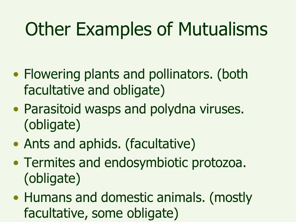 Other Examples of Mutualisms