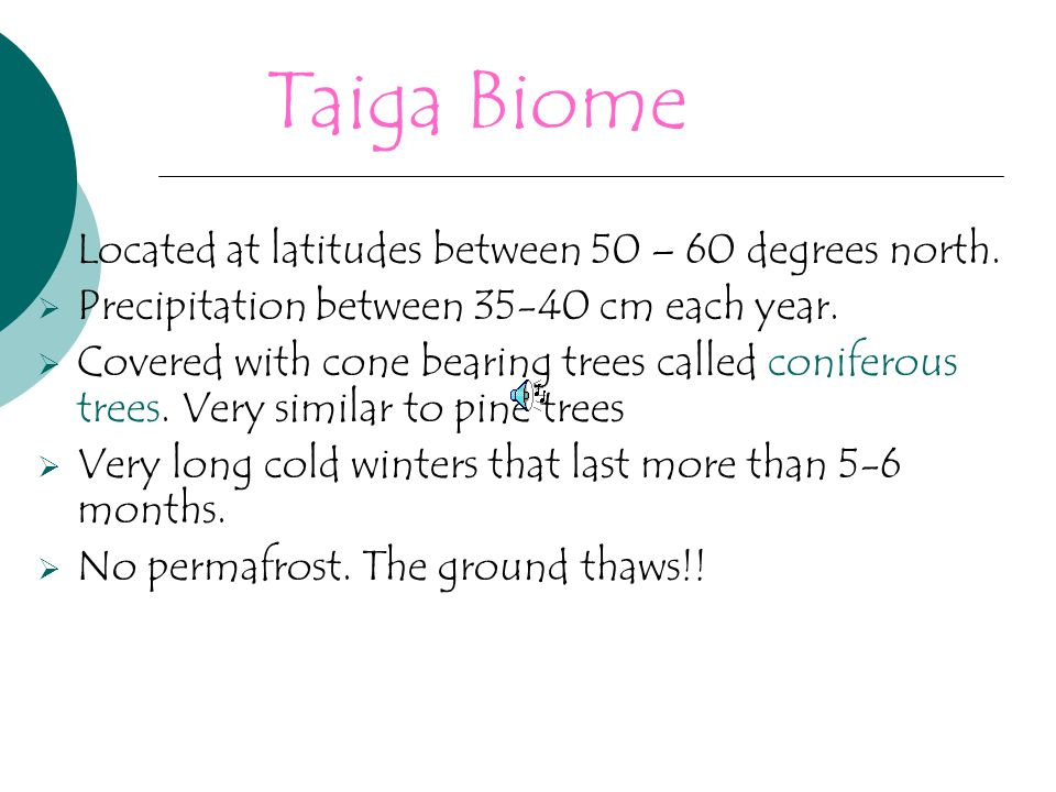 Taiga Biome Located at latitudes between 50 – 60 degrees north.