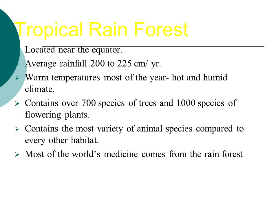 Tropical Rain Forest Located near the equator.