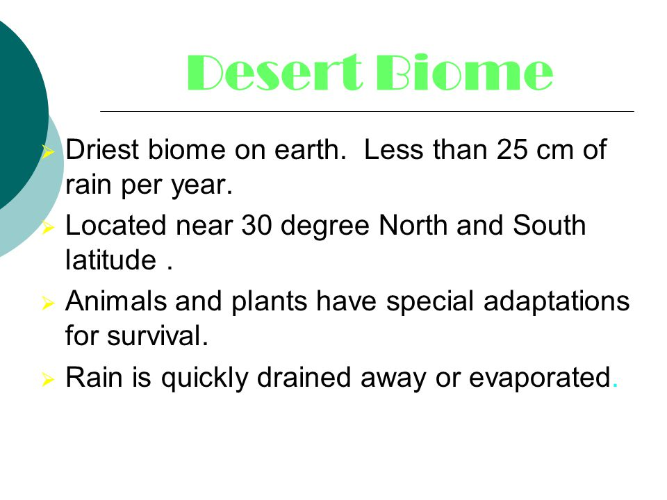 Desert Biome Driest biome on earth. Less than 25 cm of rain per year.
