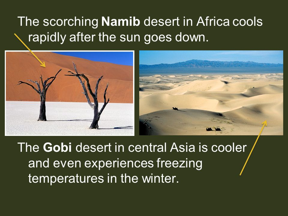 The scorching Namib desert in Africa cools rapidly after the sun goes down.