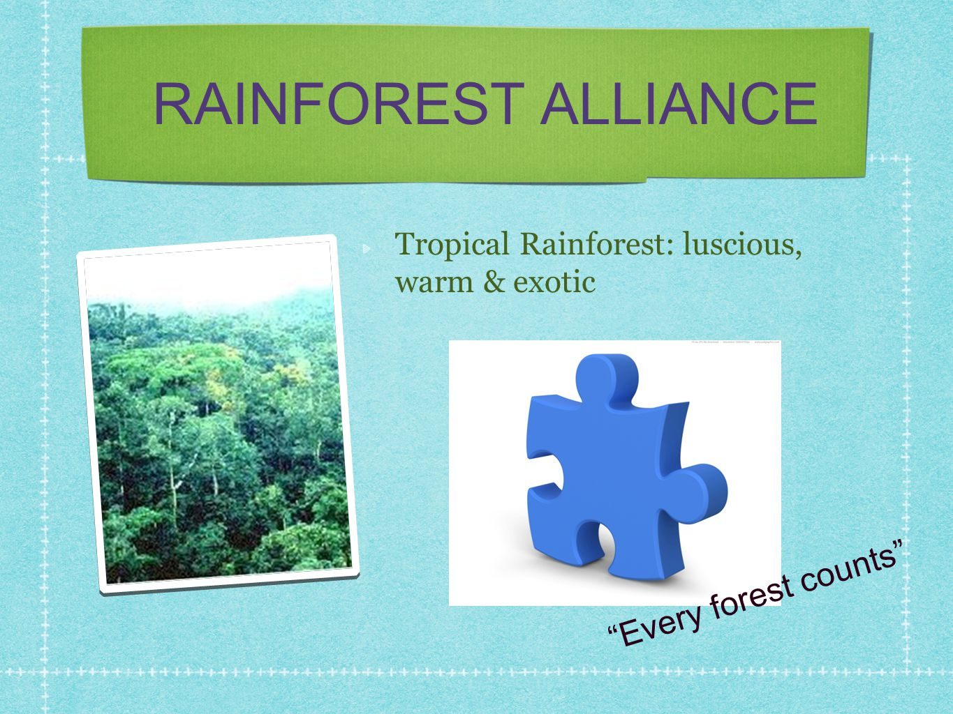 RAINFOREST ALLIANCE Every forest counts