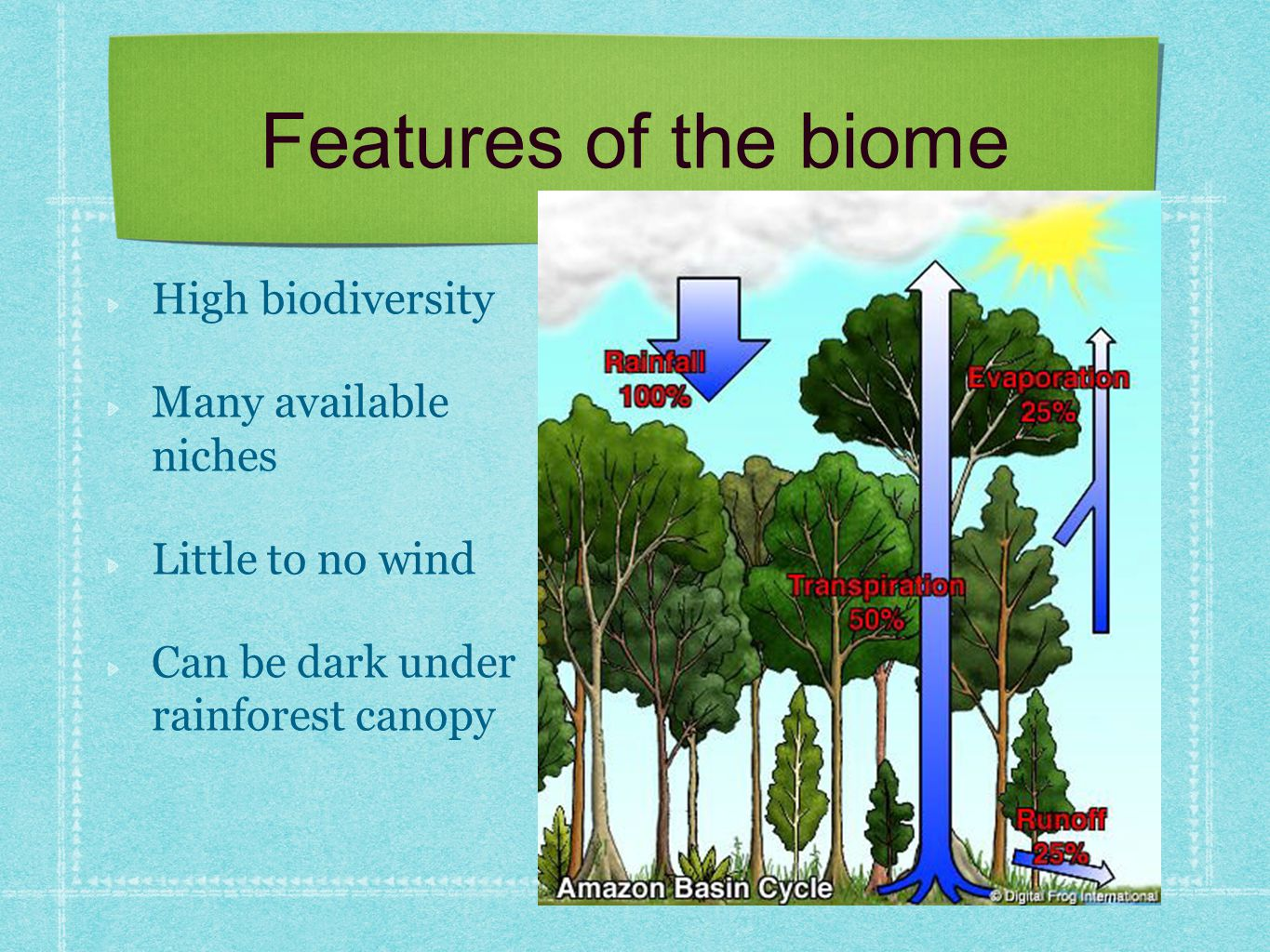 Features of the biome High biodiversity Many available niches