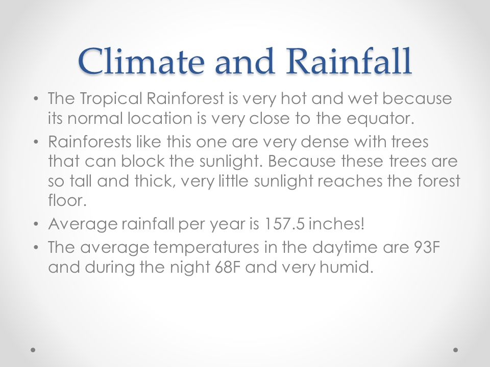 Climate and Rainfall The Tropical Rainforest is very hot and wet because its normal location is very close to the equator.