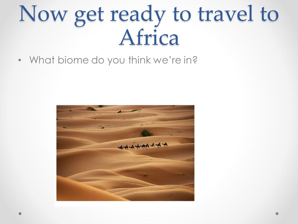 Now get ready to travel to Africa
