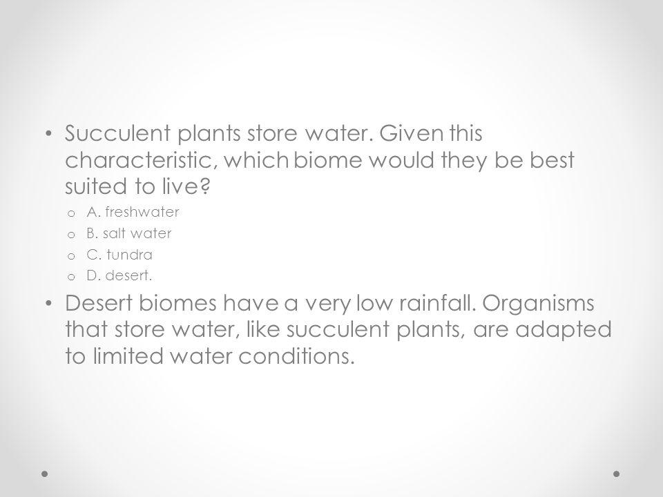 Succulent plants store water