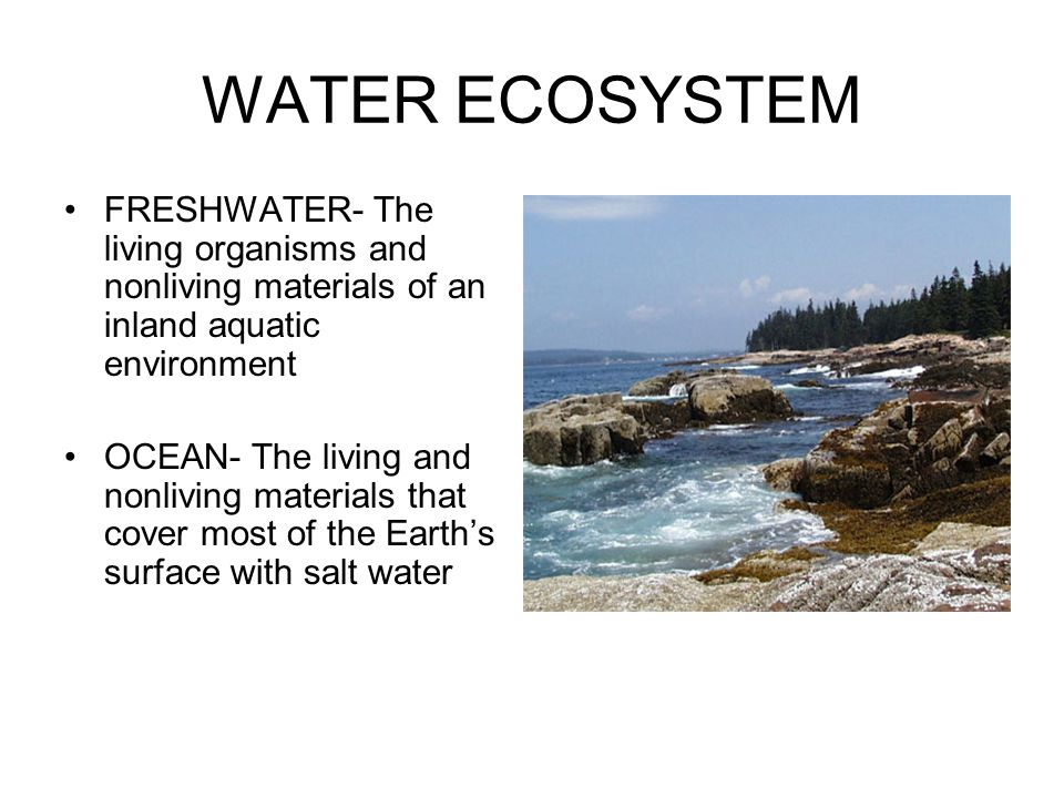 WATER ECOSYSTEM FRESHWATER- The living organisms and nonliving materials of an inland aquatic environment.