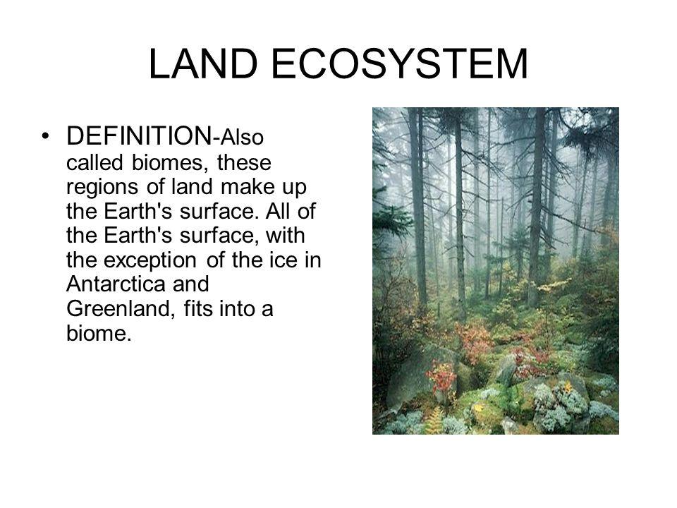 LAND ECOSYSTEM