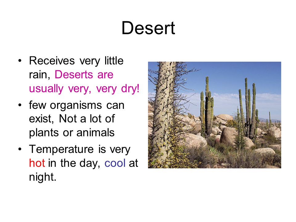 Desert Receives very little rain, Deserts are usually very, very dry!