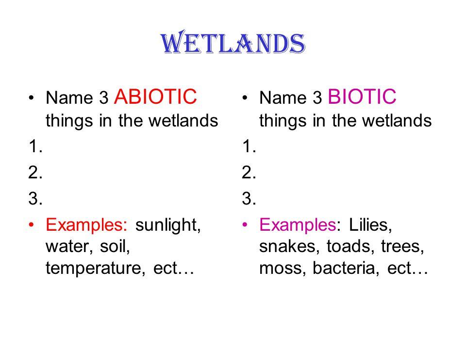 Wetlands Name 3 ABIOTIC things in the wetlands 1. 2. 3.