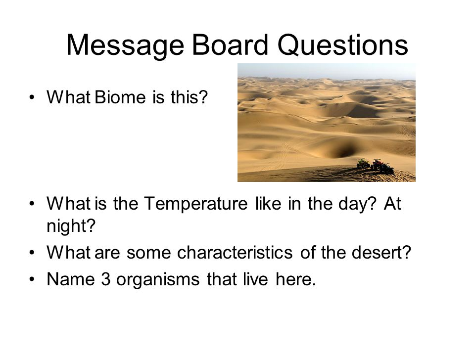 Message Board Questions