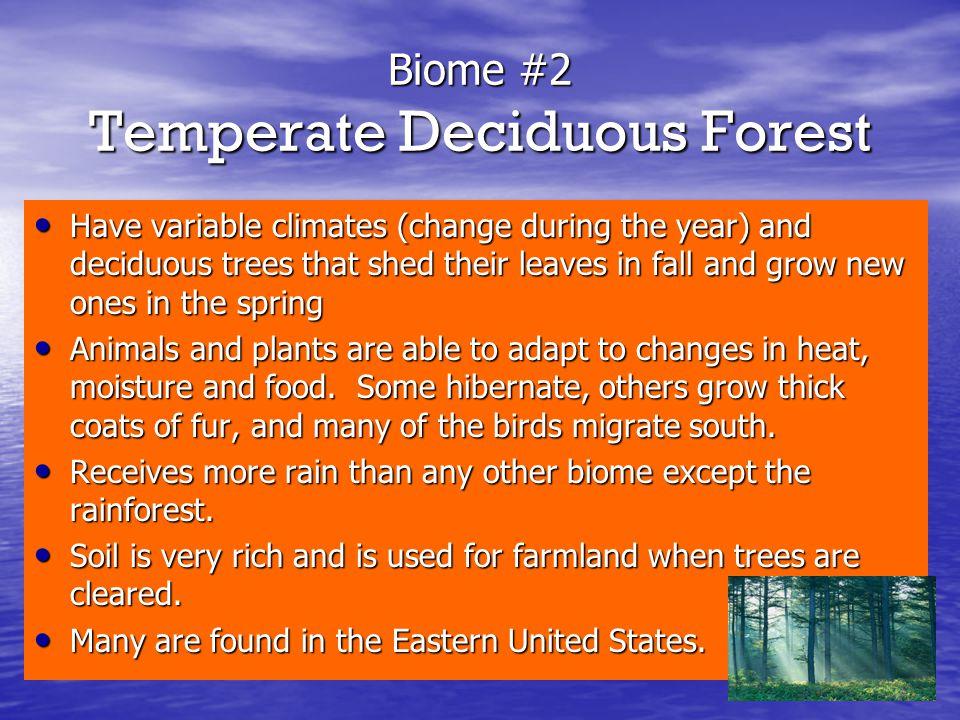 Biome #2 Temperate Deciduous Forest
