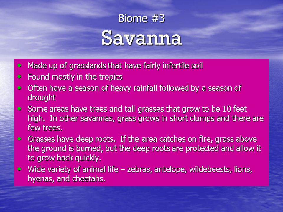 Biome #3 Savanna Made up of grasslands that have fairly infertile soil