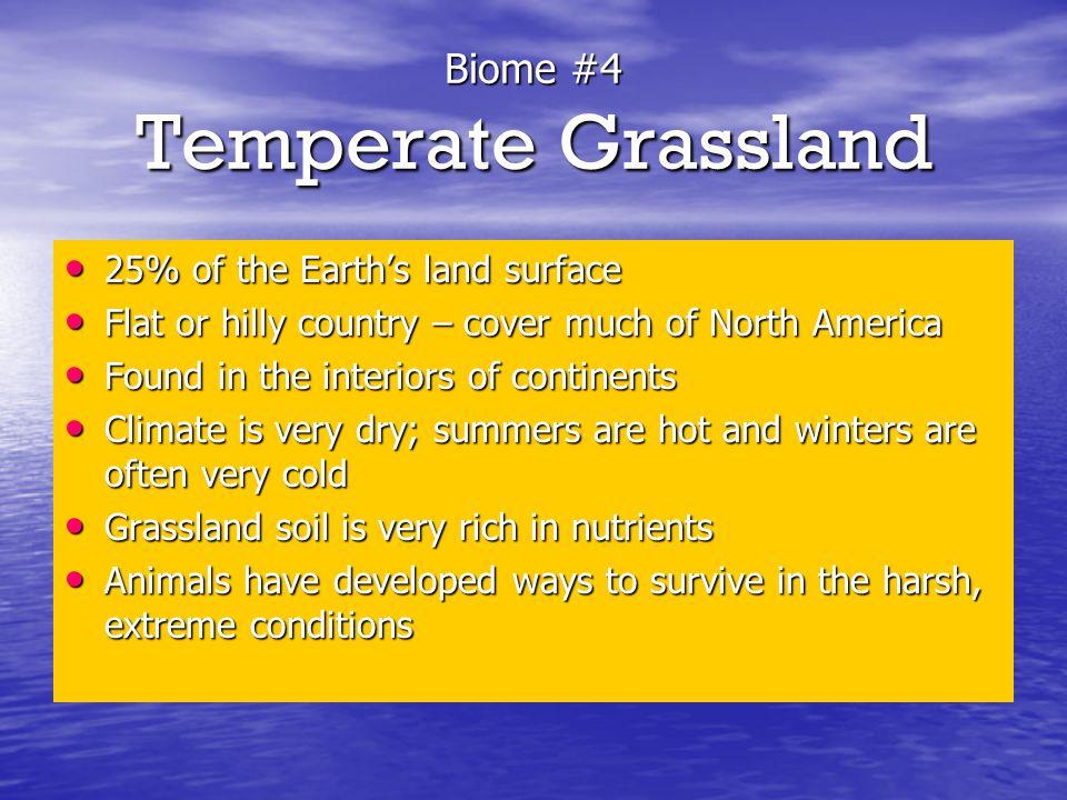 Biome #4 Temperate Grassland