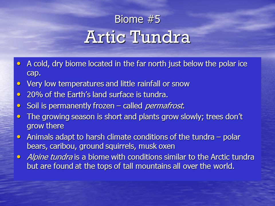 Biome #5 Artic Tundra A cold, dry biome located in the far north just below the polar ice cap. Very low temperatures and little rainfall or snow.