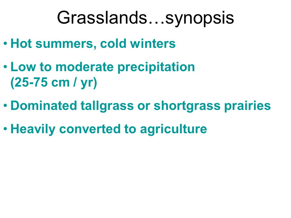 Grasslands…synopsis Hot summers, cold winters