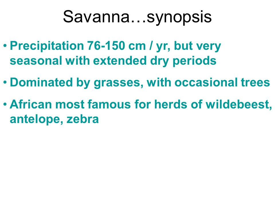 Savanna…synopsis Precipitation 76-150 cm / yr, but very seasonal with extended dry periods. Dominated by grasses, with occasional trees.