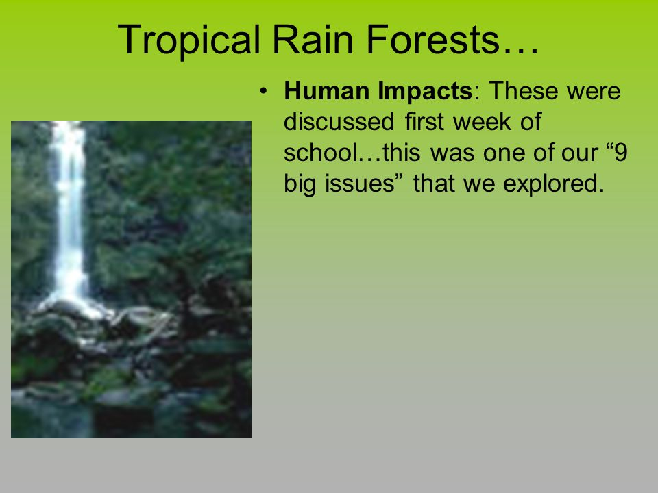 Tropical Rain Forests…