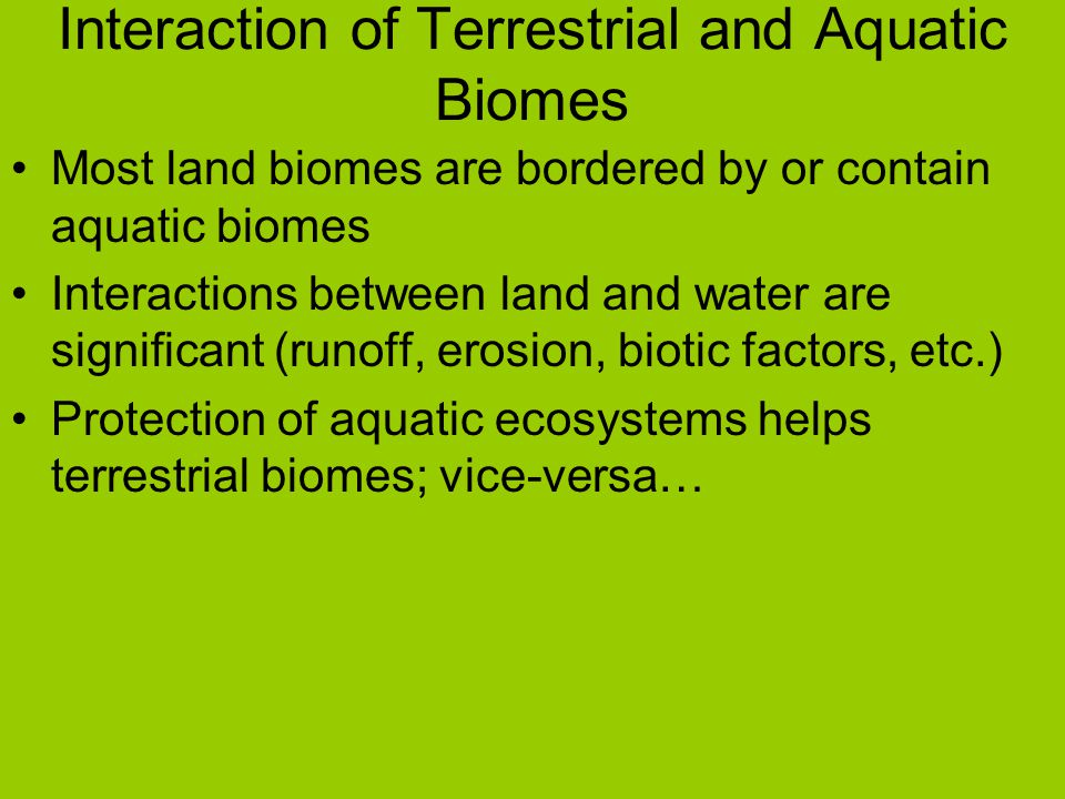 Interaction of Terrestrial and Aquatic Biomes