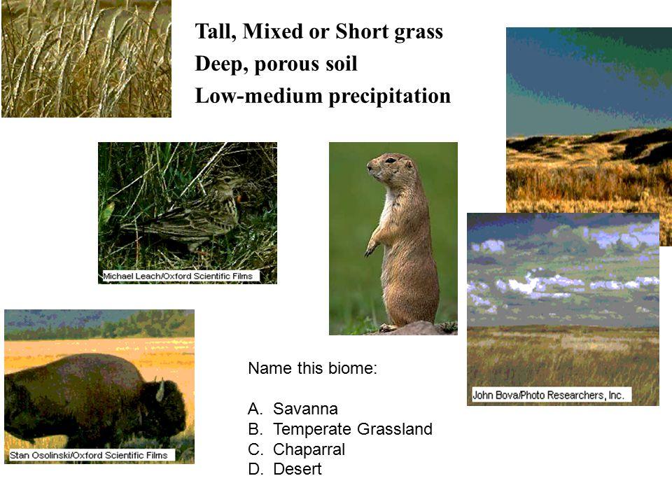 Tall, Mixed or Short grass Deep, porous soil Low-medium precipitation