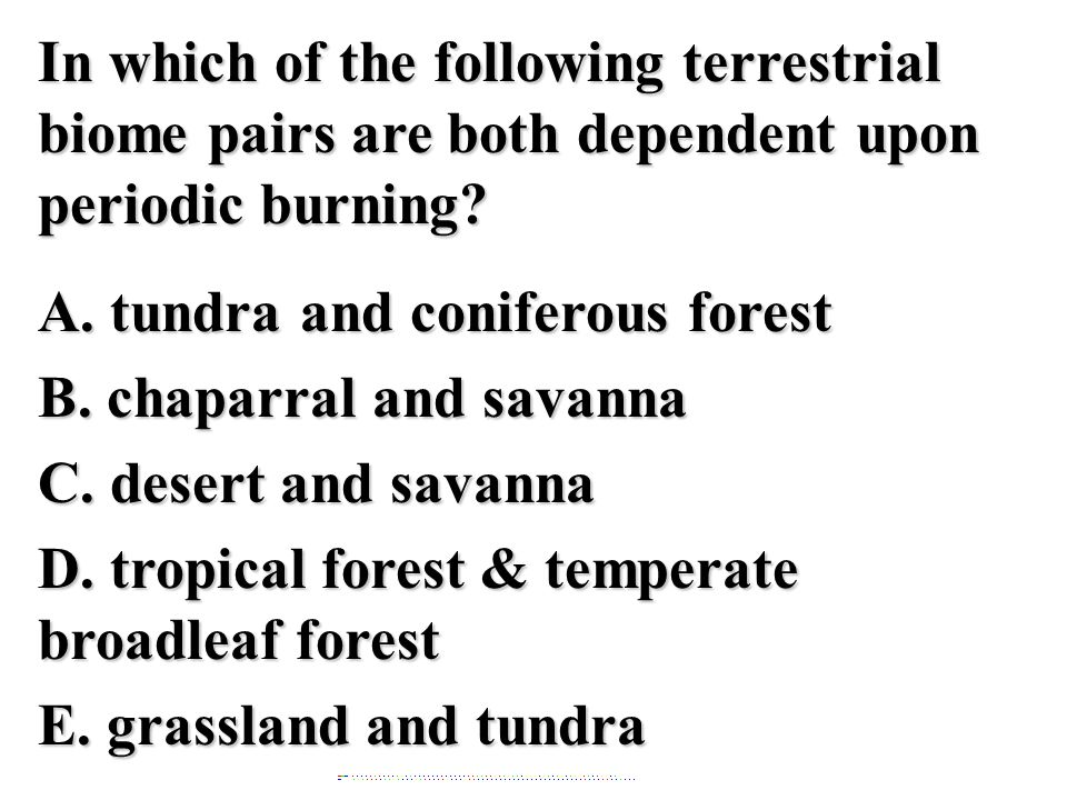 In which of the following terrestrial biome pairs are both dependent upon periodic burning A. tundra and coniferous forest B. chaparral and savanna C. desert and savanna D. tropical forest & temperate broadleaf forest E. grassland and tundra
