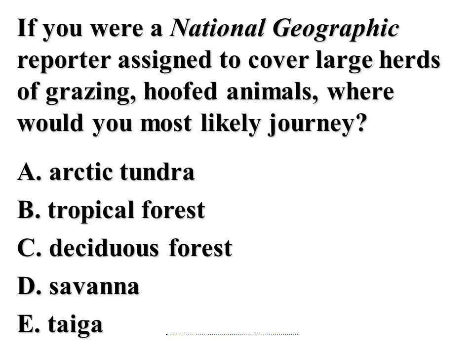 If you were a National Geographic reporter assigned to cover large herds of grazing, hoofed animals, where would you most likely journey A. arctic tundra B. tropical forest C. deciduous forest D. savanna E. taiga