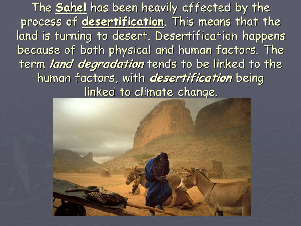 The Sahel has been heavily affected by the process of desertification