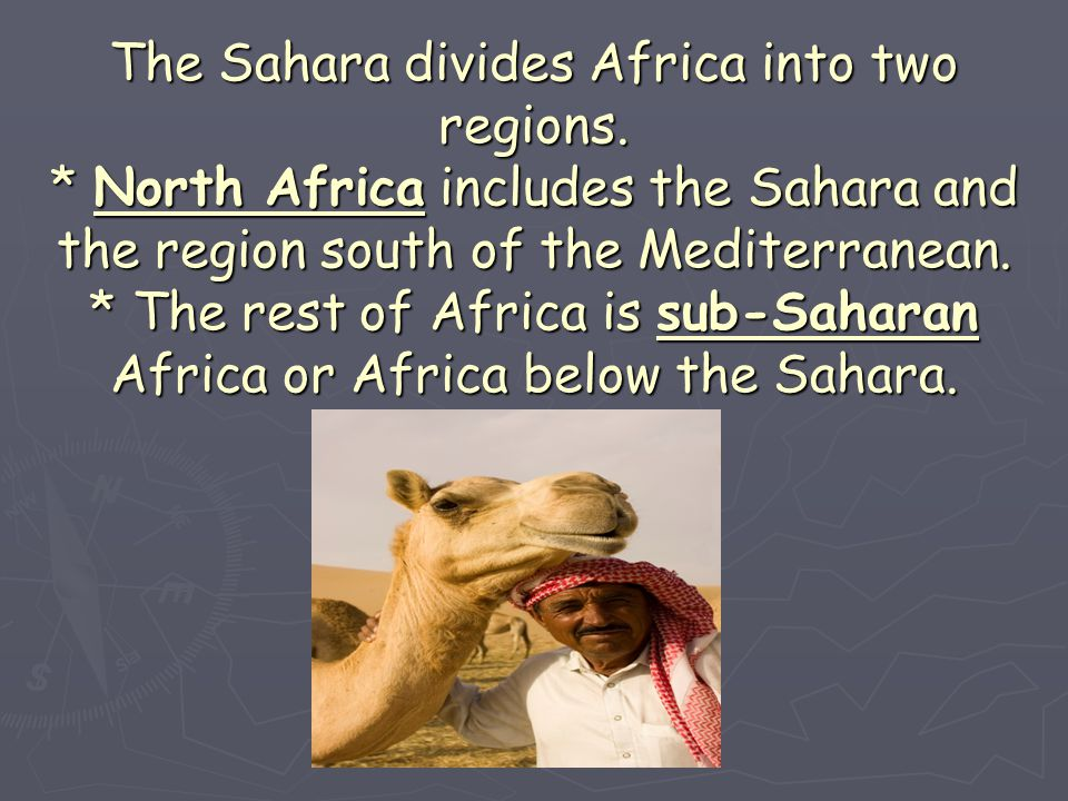 The Sahara divides Africa into two regions