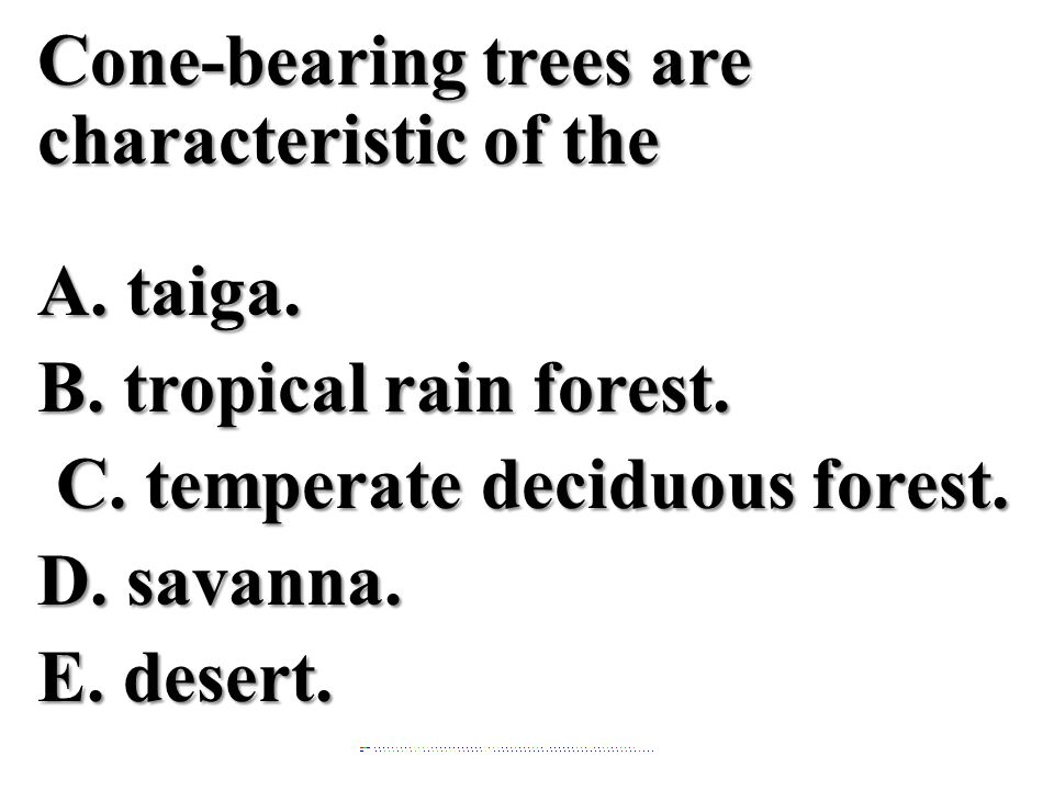 Cone-bearing trees are characteristic of the A. taiga. B