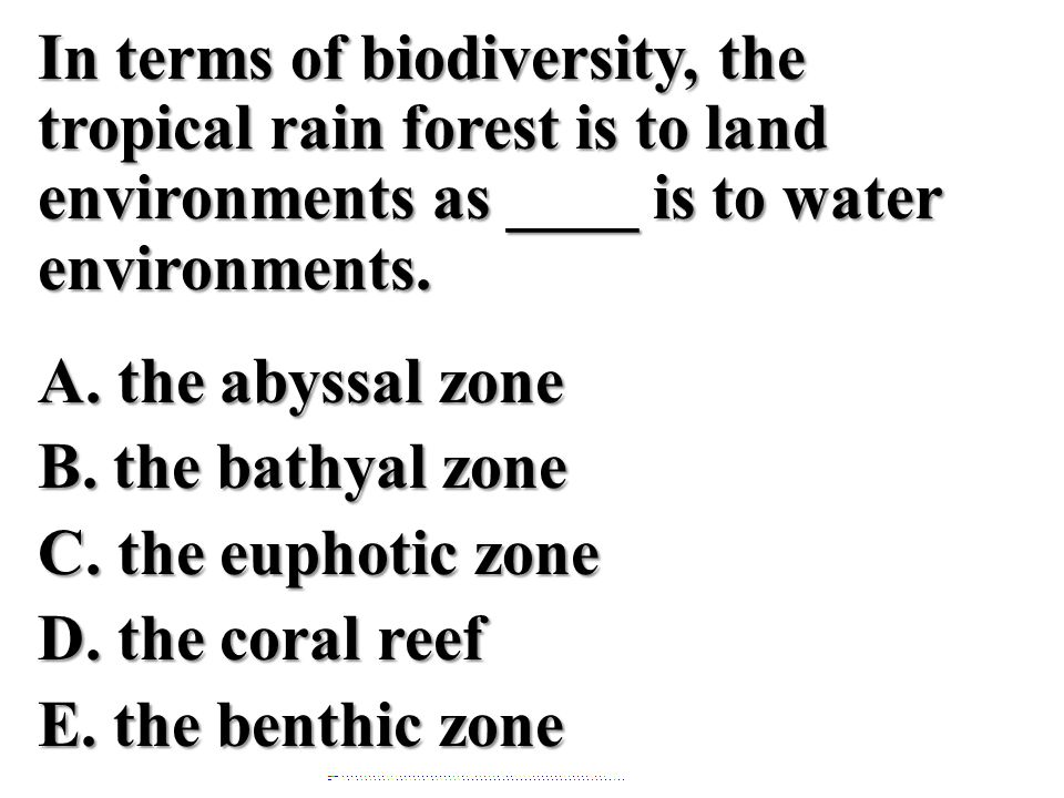 In terms of biodiversity, the tropical rain forest is to land environments as ____ is to water environments. A. the abyssal zone B. the bathyal zone C. the euphotic zone D. the coral reef E. the benthic zone