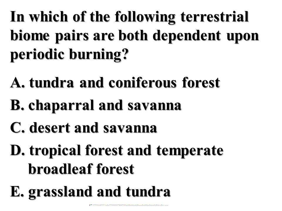 In which of the following terrestrial biome pairs are both dependent upon periodic burning A. tundra and coniferous forest B. chaparral and savanna C. desert and savanna D. tropical forest and temperate broadleaf forest E. grassland and tundra