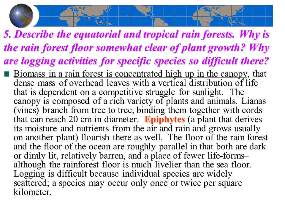 5. Describe the equatorial and tropical rain forests