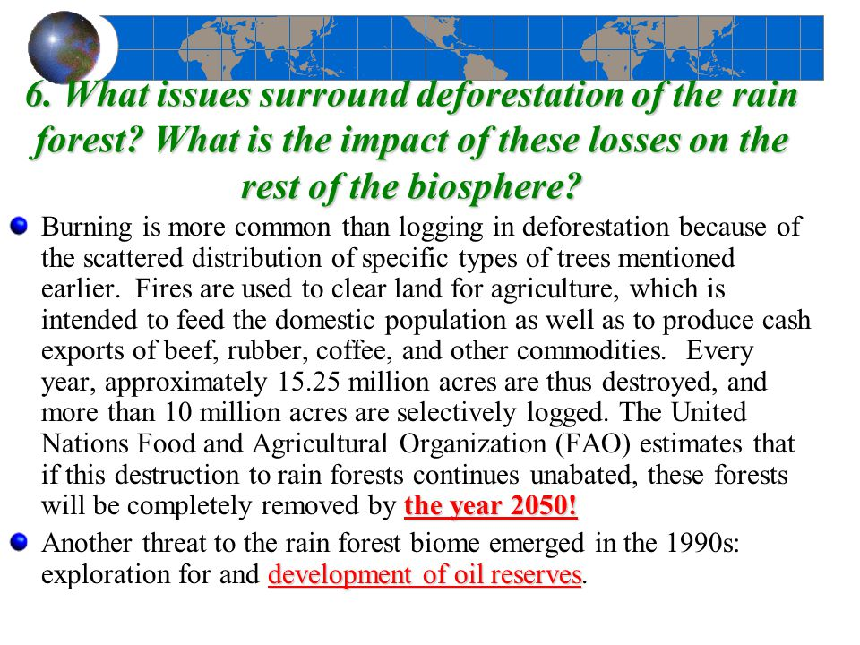 6. What issues surround deforestation of the rain forest