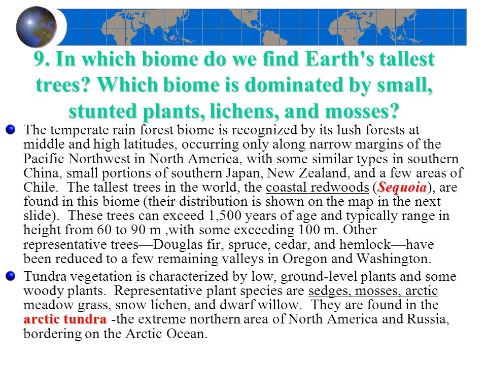 9. In which biome do we find Earth s tallest trees