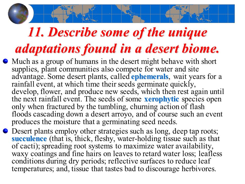 11. Describe some of the unique adaptations found in a desert biome.