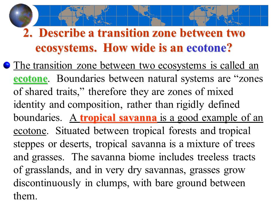 2. Describe a transition zone between two ecosystems