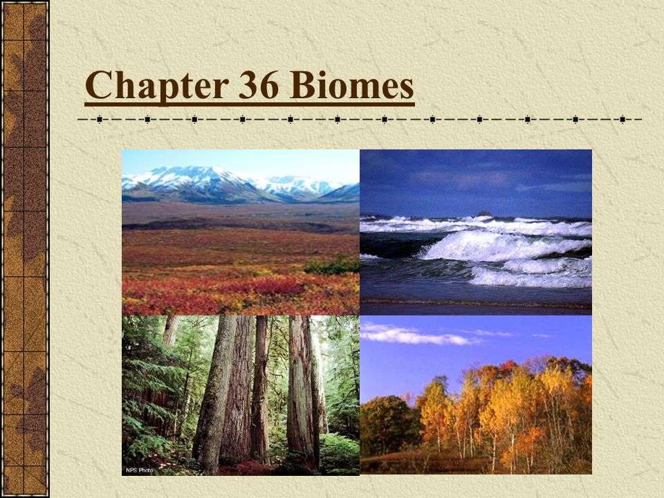 Chapter 36 Biomes