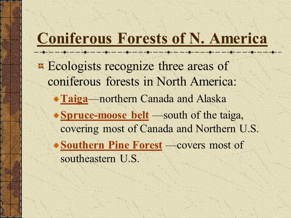 Coniferous Forests of N. America