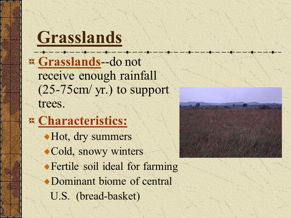 Grasslands Grasslands--do not receive enough rainfall (25-75cm/ yr.) to support trees. Characteristics: