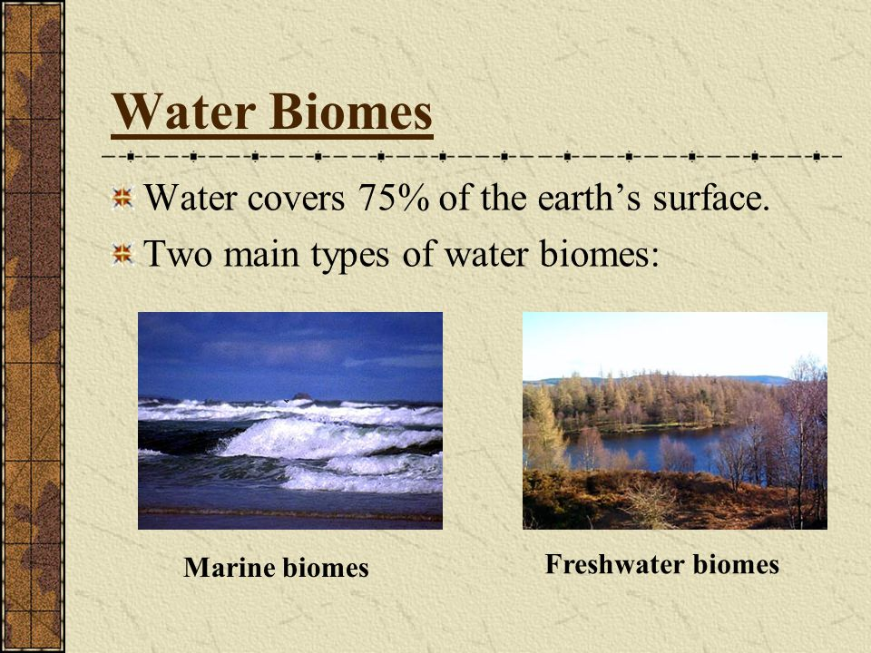 Water Biomes Water covers 75% of the earth's surface.
