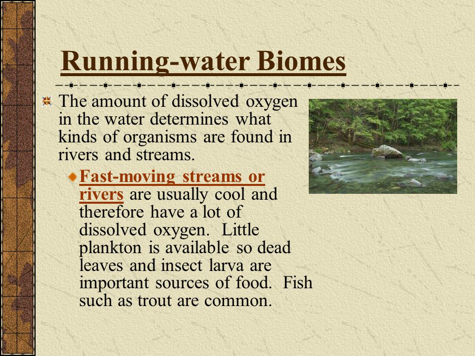 Running-water Biomes The amount of dissolved oxygen in the water determines what kinds of organisms are found in rivers and streams.