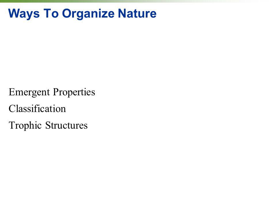 Ways To Organize Nature