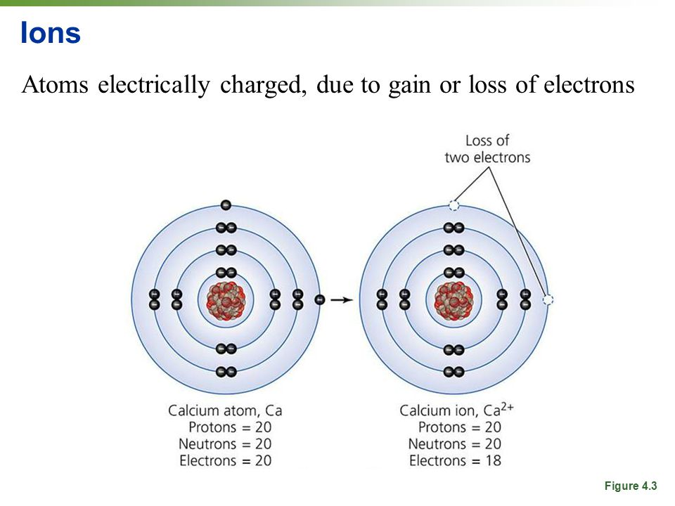 Ions Atoms electrically charged, due to gain or loss of electrons