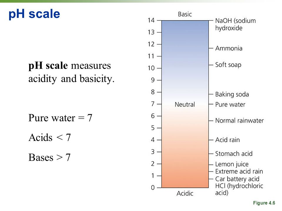 pH scale pH scale measures acidity and basicity. Pure water = 7